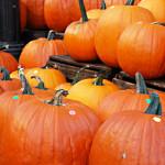ハロウィンのかぼちゃはアメリカでは食べる?味やレシピは?
