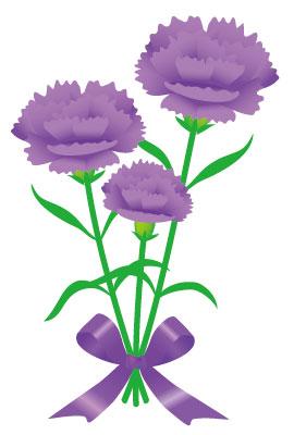 カーネーション 紫