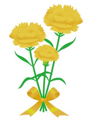 カーネーション 黄色
