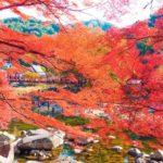 香嵐渓もみじまつり2017!ライトアップ情報や紅葉の見頃の時期は?