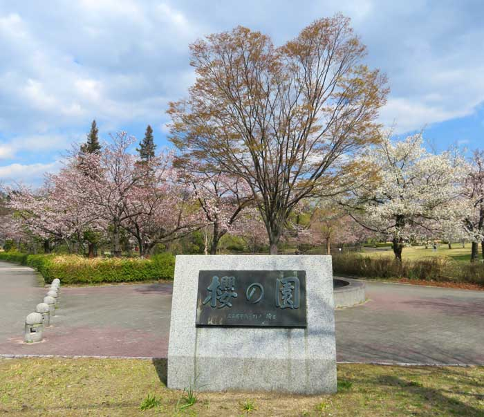 平和公園 櫻の園
