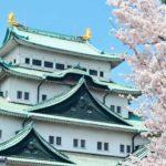 名古屋城の桜まつりへ行こう!桜の見頃の時期や開花情報、ライトアップの時間は?