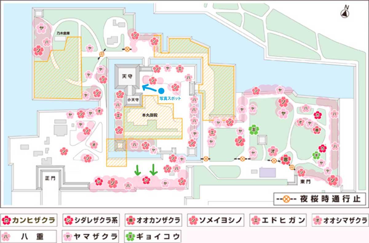 名古屋城 桜マップ