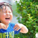 1日で簡単にできる夏休みの自由研究があった!小学生向けおすすめのネタ4つ!