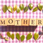 【まとめ】母の日に役立つ情報!【由来からおすすめプレゼント・メッセージ例文まで】